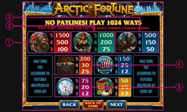 arctic fortune slot symbol