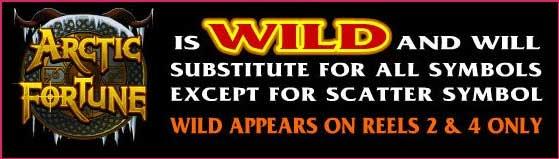 arctic fortune slot wild